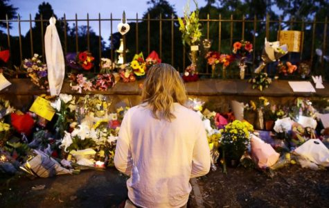 The Aftermath of the New Zealand Mass Shootings: How is the World Reacting?